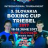 3. Slovakia Boxing cup