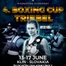 4. Slovakia Boxing cup
